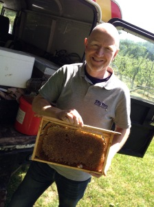 Straight from the hive - Chris with honeycomb